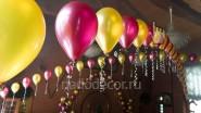 Гирлянда из гелиевых шаров: 180руб/м
