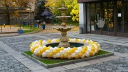 Оформление фонтана гирляндой из шаров