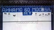 Украшение ледового дворца к юбилею Динамо
