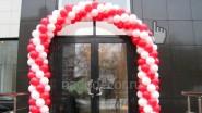 Арка из воздушных шаров, цена: 2310 руб