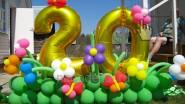 Цифры из шаров «20» в необычном обрамлении